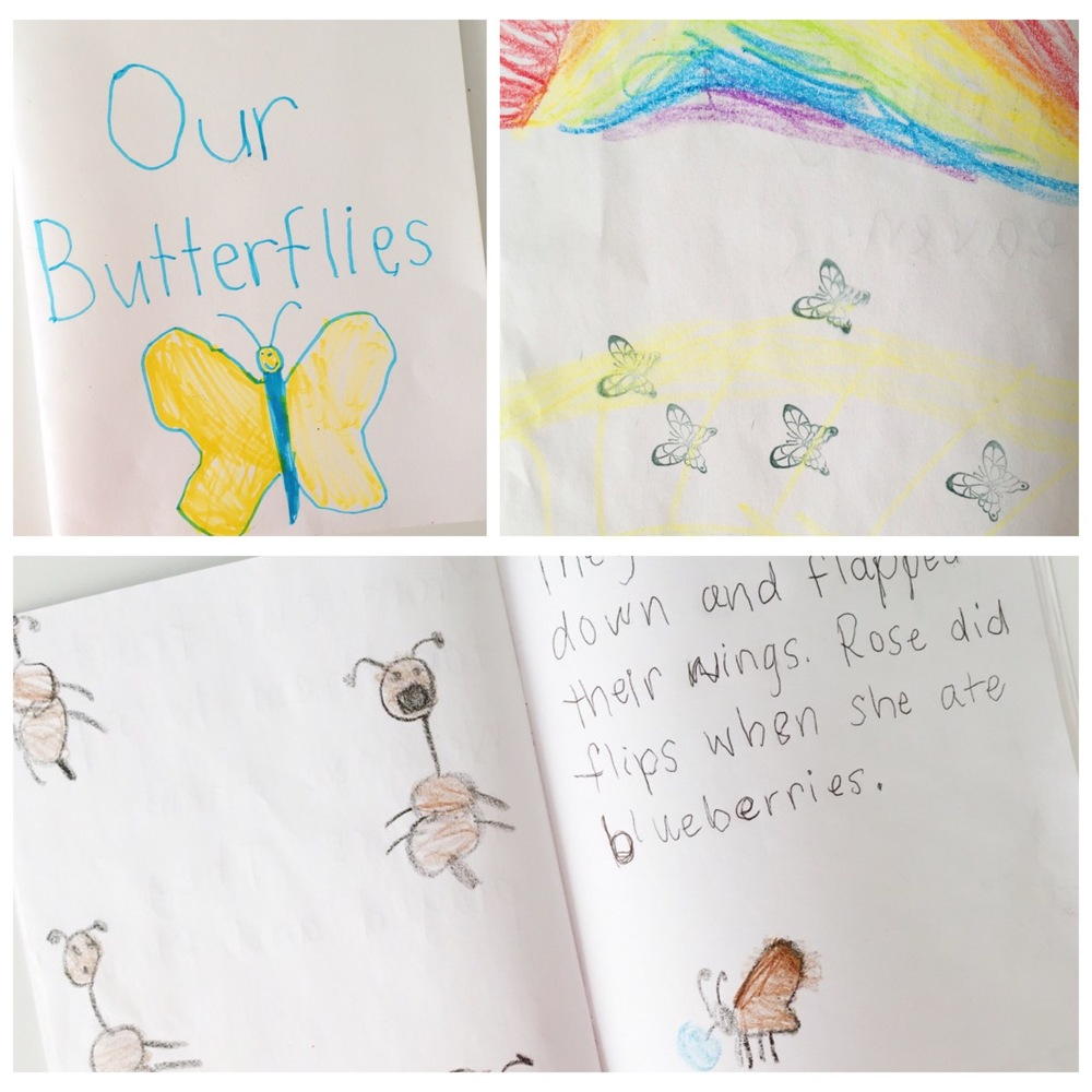 homeschool butterfly lessons