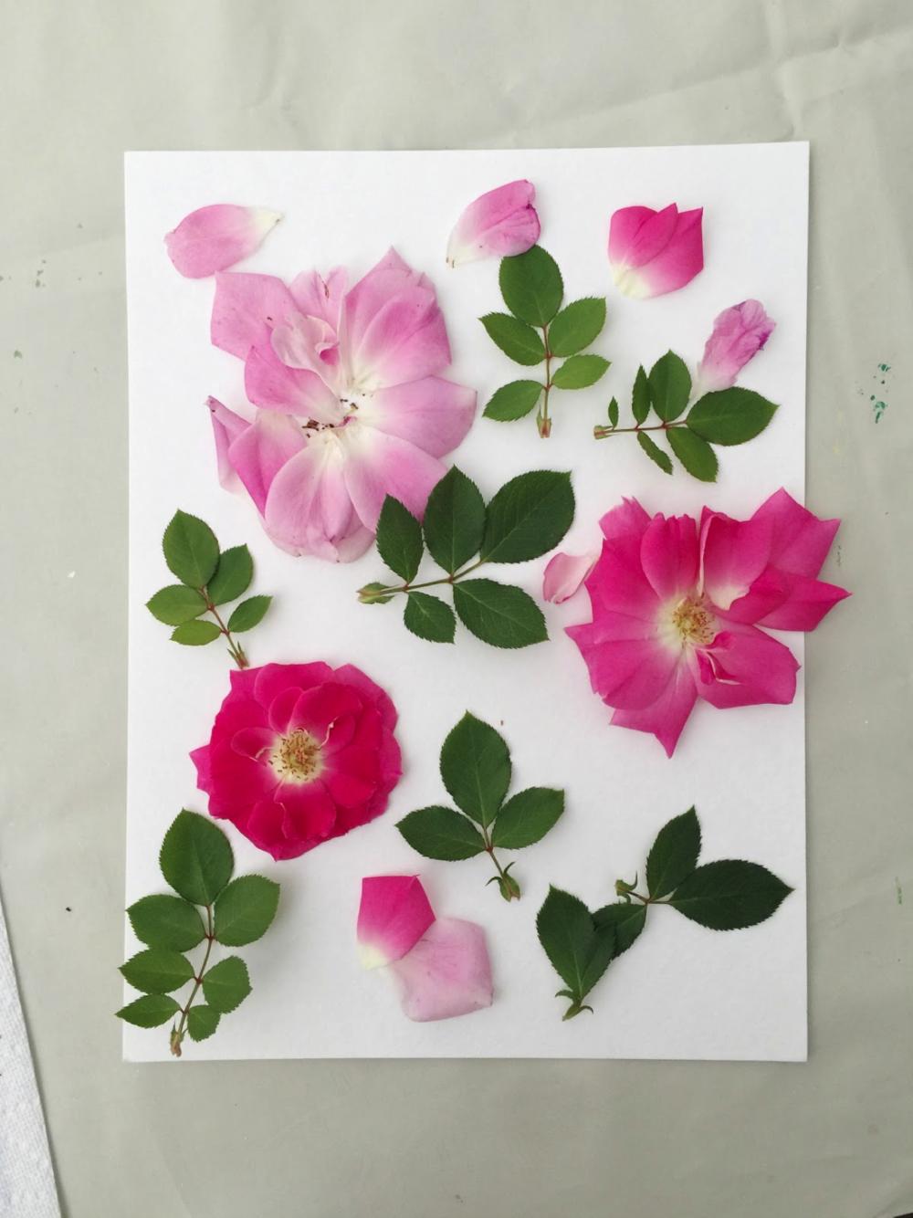 DIY_floral_relief-3.png