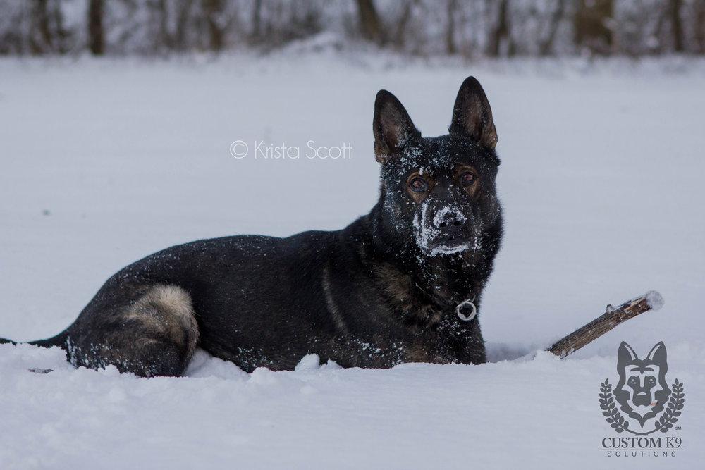Ayk Snow-100.jpg