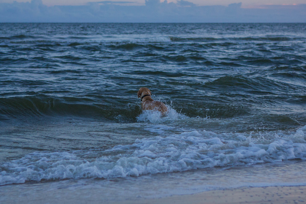 Remi Beach-2.jpg