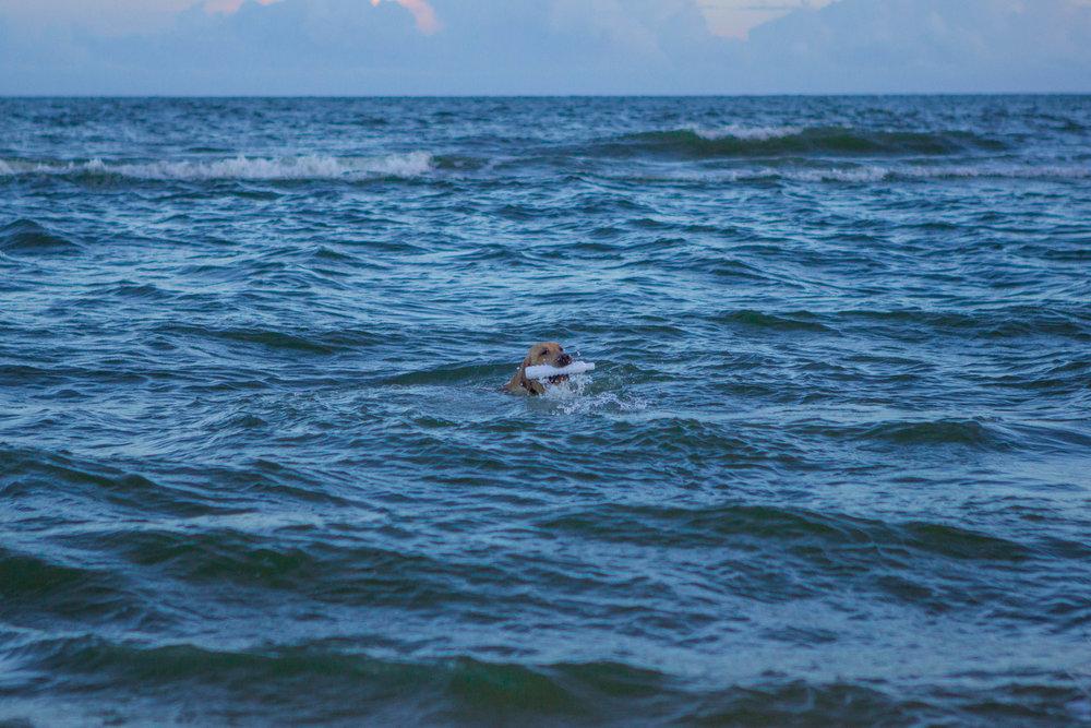 Remi Beach-6.jpg