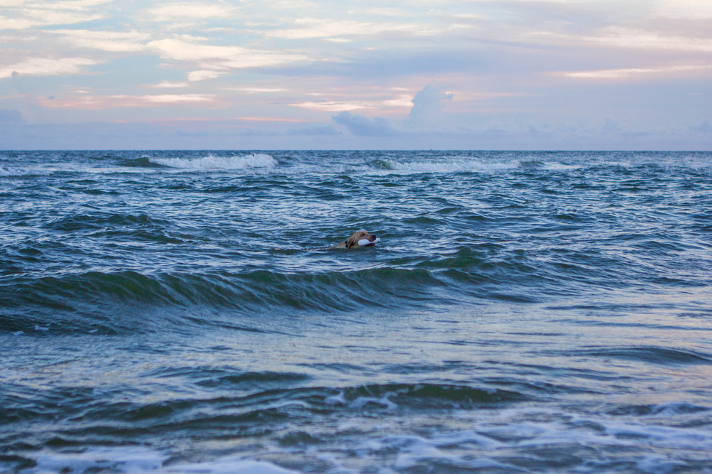 Remi Beach-8.jpg