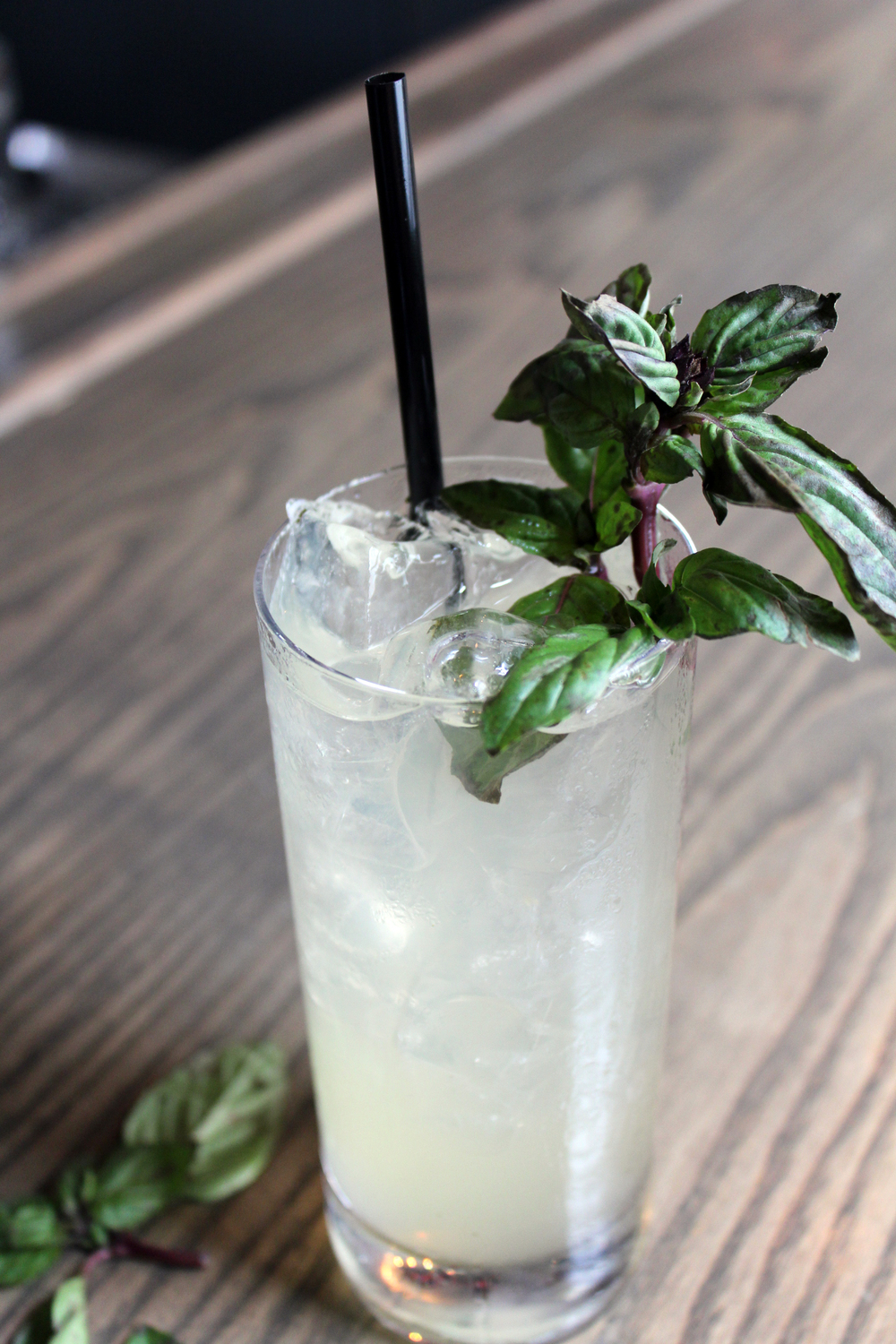 Thai_Basil_Collins_4.JPG