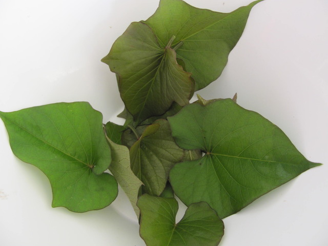sweet_potato_leaves