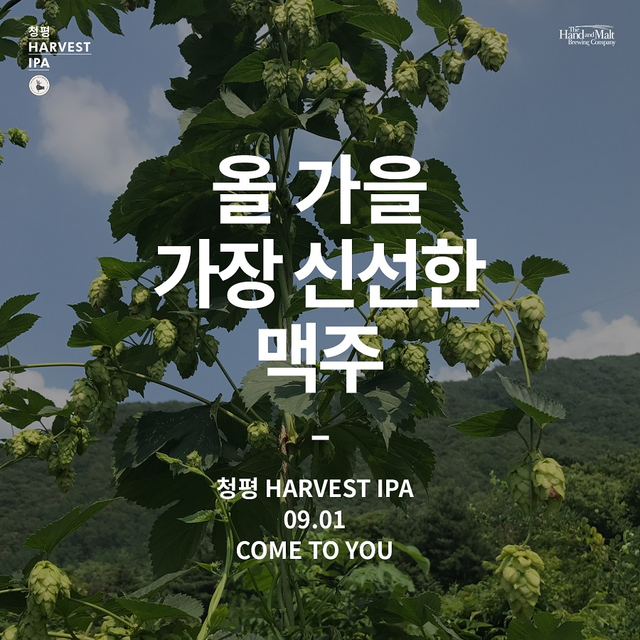 SNS POSTING LAYOUT_HARVEST IPA_170817_8.jpg