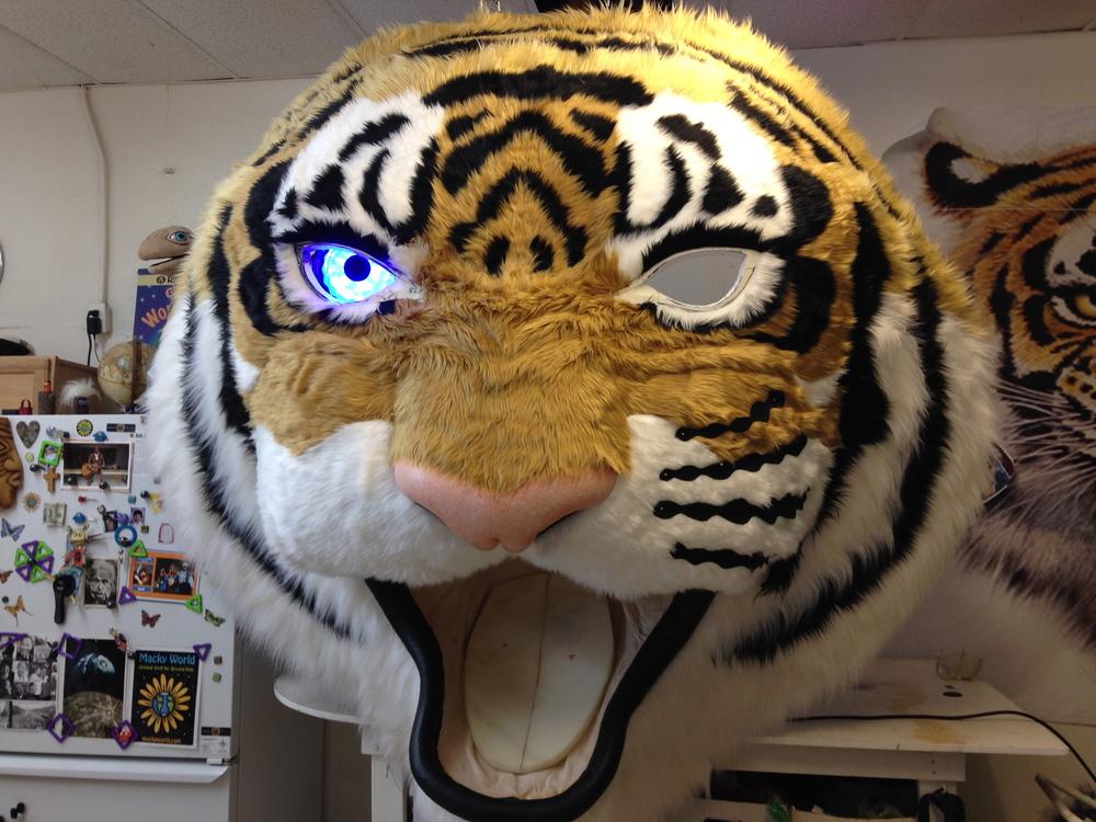 Matthew McAvene installs light up eyes to a large tiger sculpture for tiger heroes.jpg