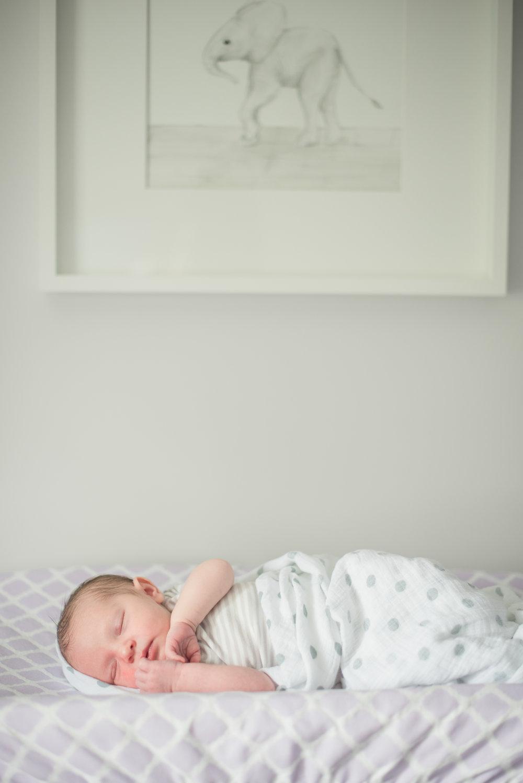 Stella_newborn-72.jpg