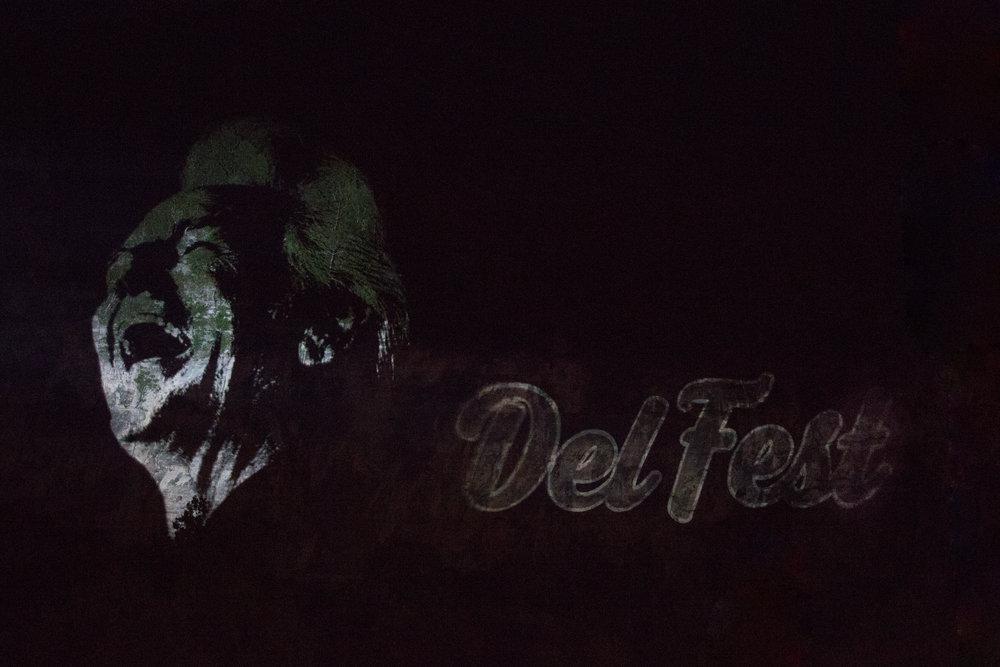 DelFest-88.jpg