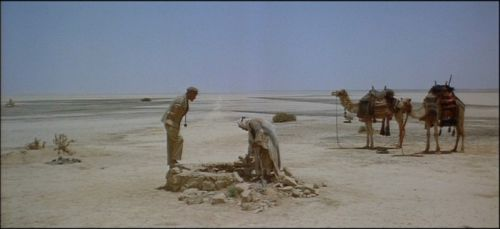 Lawrence of Arabia oasis