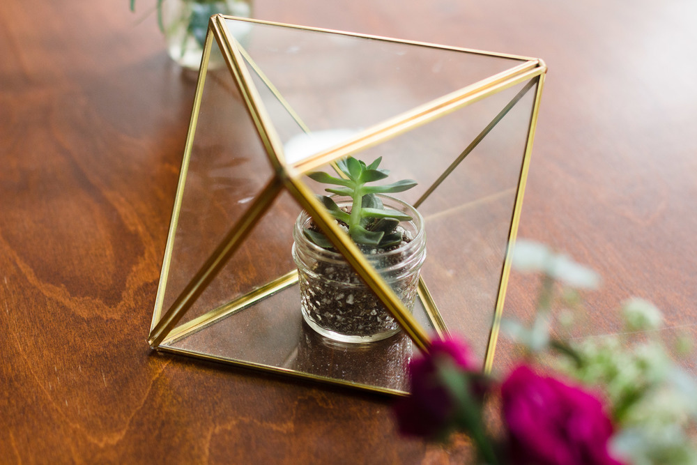 Ceterpieces: geometric terrariums from West Elm