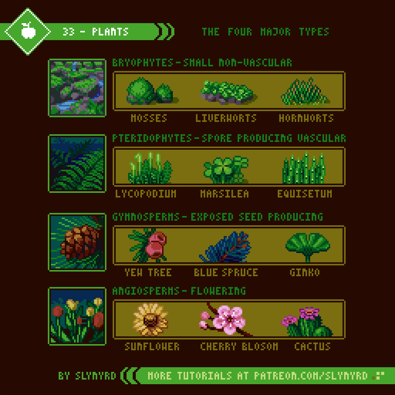 33-Plants.png