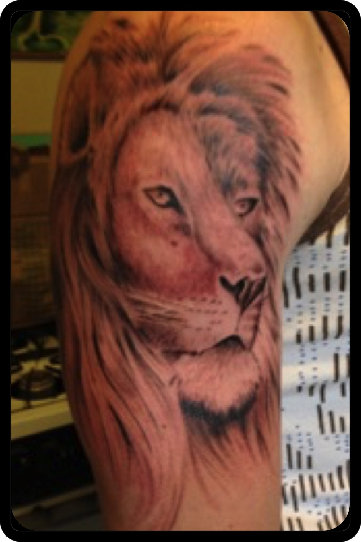 lionhead copy.jpg