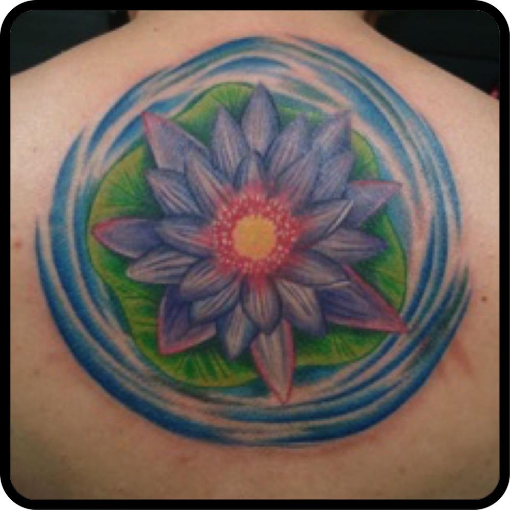 lotuspetal.jpg