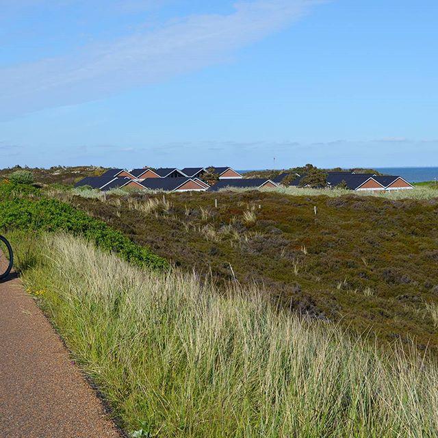 Unterwegs nach #list 💙 #Fahrrad #Kampen #kampensylt #listsylt #Sylt #ilwsylt #inlovewithsylt #Dünen #inselliebe #fahrradweg