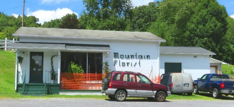 mountainflorist.jpg