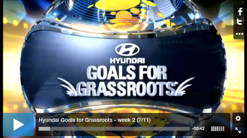 Hyundai Goals for Grassroots
