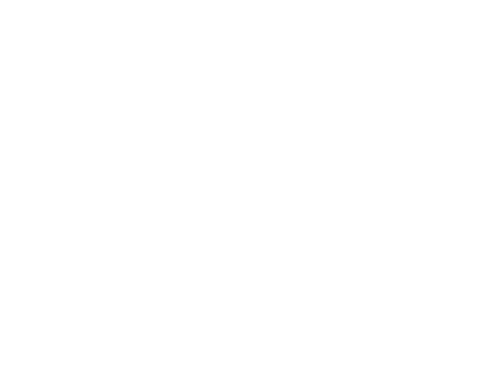 Payback Films | Video & Film Production Services & Studio in Neuhausen am Rheinfall (Schaffhausen)