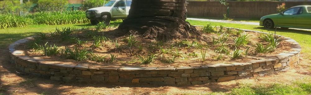 Circular dry stone retaining wall. Hawthorn, Adelaide, South Australia