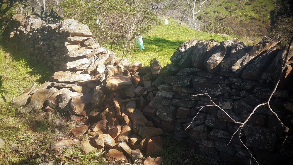 Historic Dry Stone Field Wall before repair, Highland Valley, South Australia