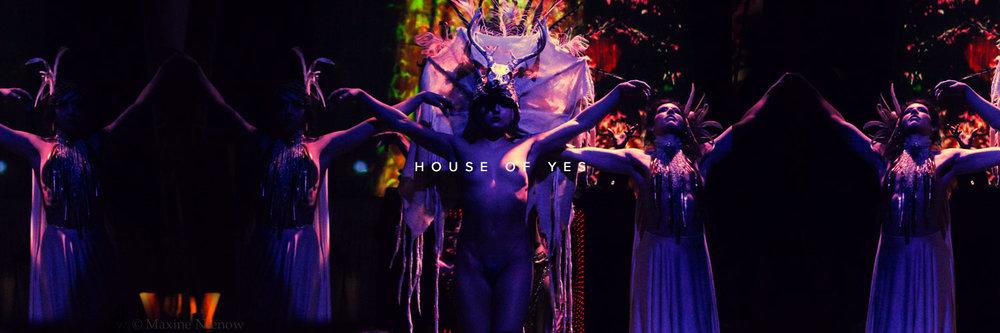 artist_house_of_yes.jpg