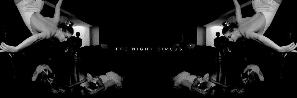 artist_night_circus.jpg
