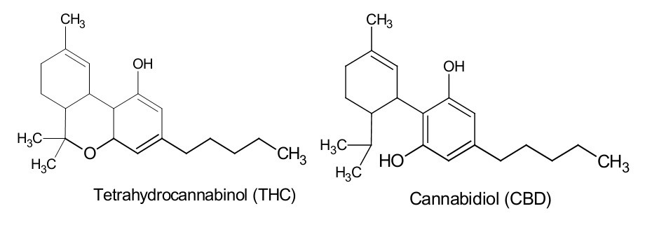 THC-vs-CBD-chemical-structure.jpg