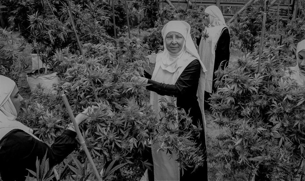 weed nuns.jpeg