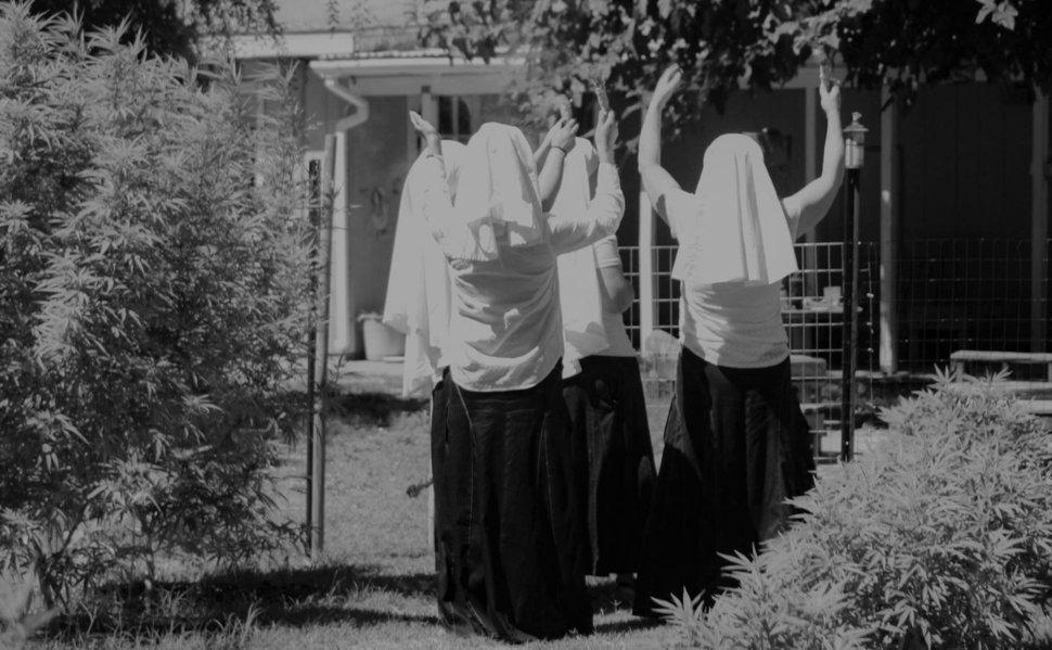 weed nuns 6.jpeg