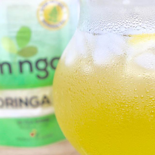 Is the sun making you sweat like this ice cold pitcher of Minga tea? 🌞 While you cool down with your frosty glass, remember that each Minga order you make = one more tree planted toward our One Million Moringa Trees Campaign! Learn more at www.mingafoods.com . . . #1mmMoringaTrees #MakeLifeHealthy #Moringa #Superfood #FitFam #Ghana #MadeInGhana #Accra #EarthDay #Antioxidants #Natural #Organic