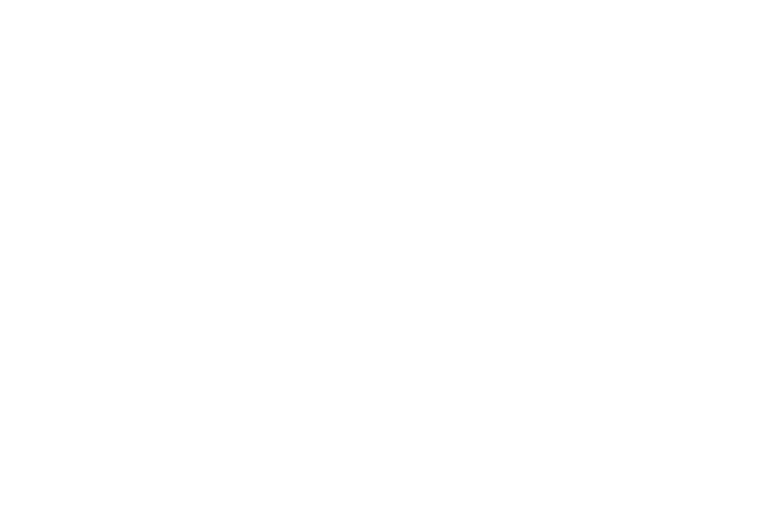 The Noble Force