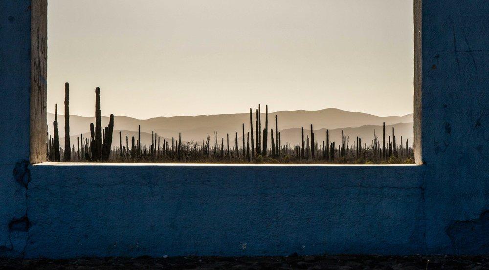 Baja Blues