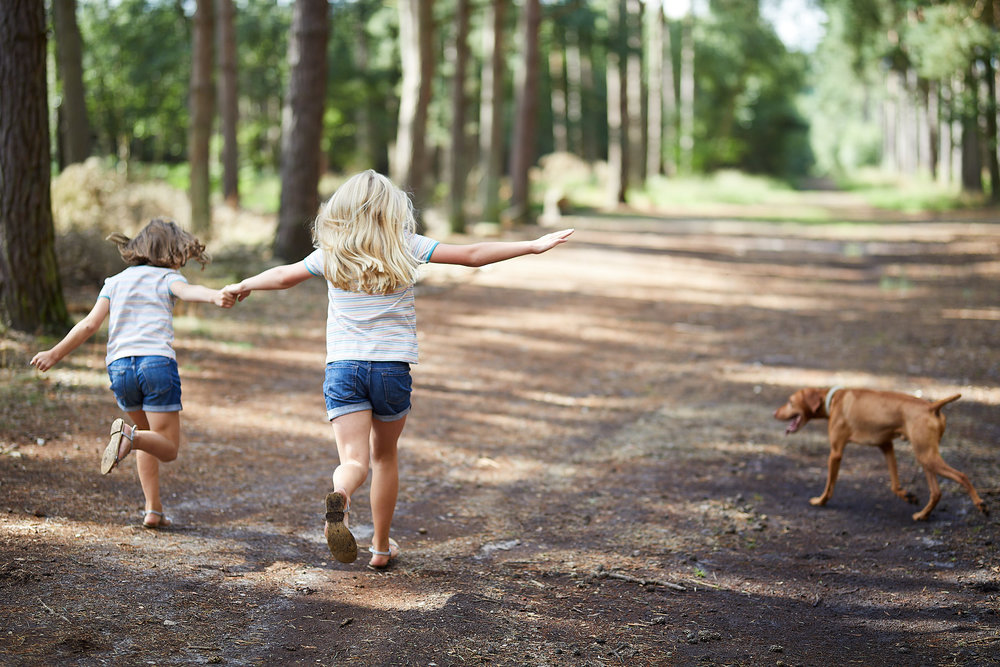 2 girls and their dog run along in woodland near Lincoln UK on a family photography session