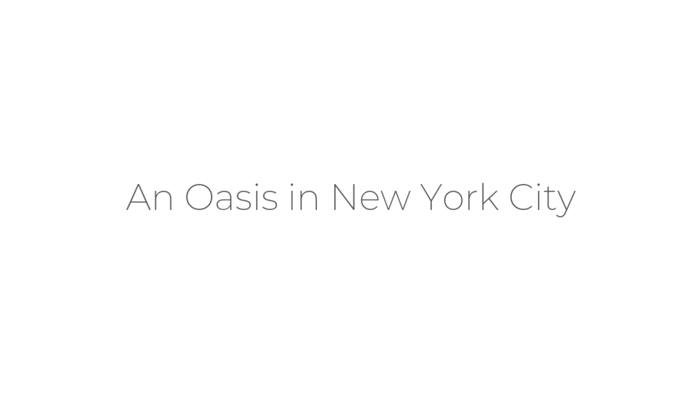 An Oasis in New York City.png