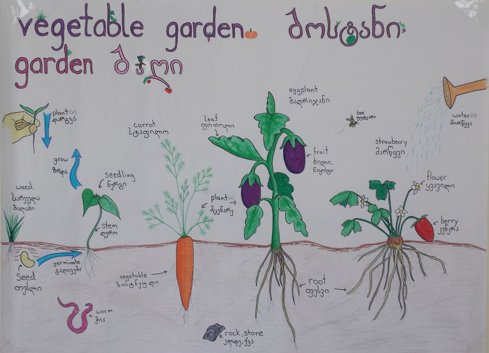 BJ's first totally awesome hand drawn garden vocabulary poster. More may come.