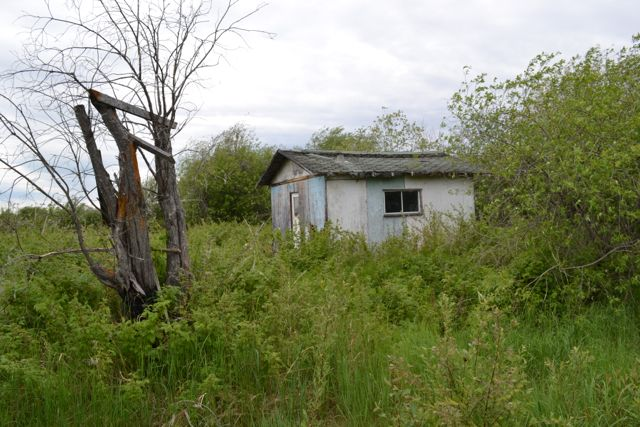 eugenes cabin.jpg