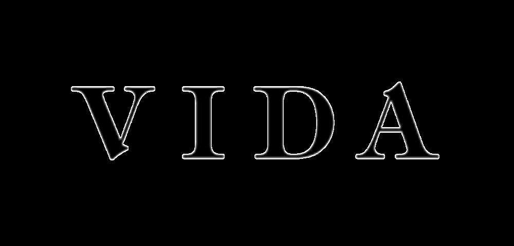 Image result for vida logo