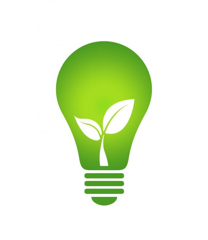 Lightbulb leaf.jpg
