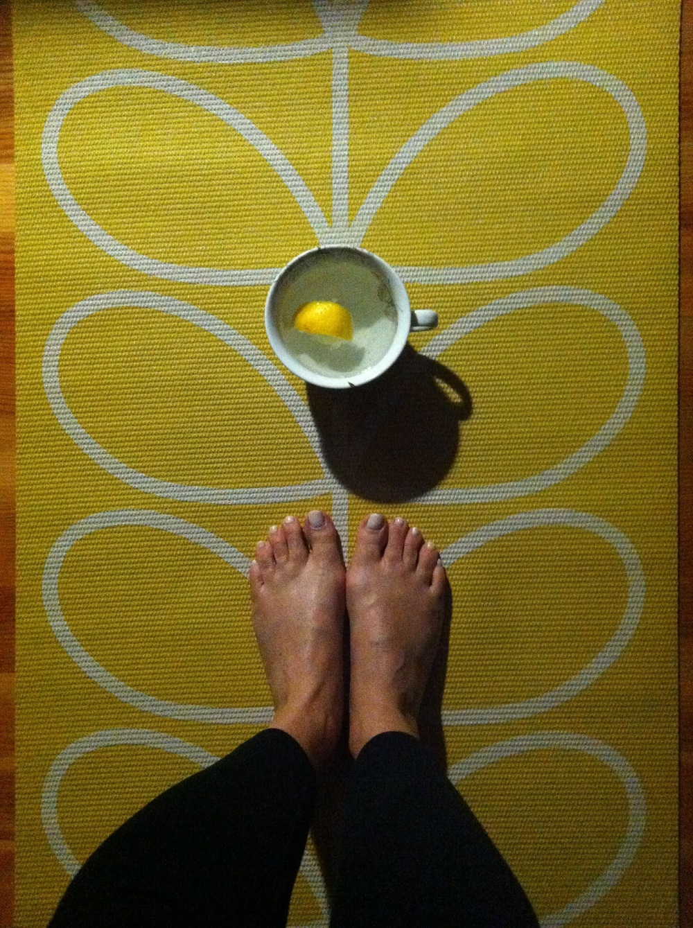 My new Orla Kiely for Target Gaiam Linear Stem Sunflower yoga mat