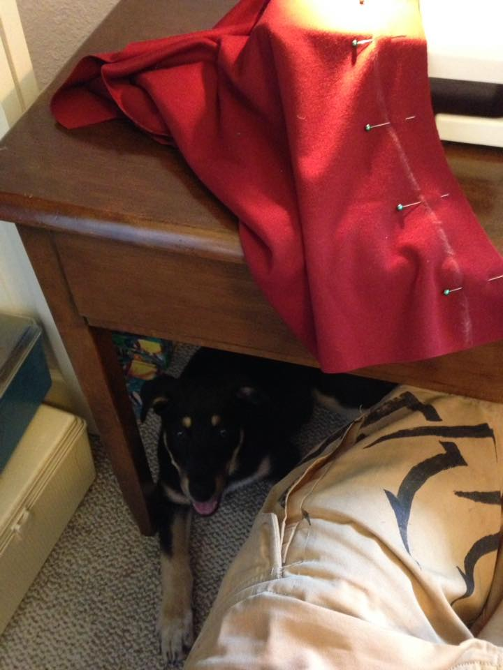 This is his favorite spot, right underneath my sewing desk. He seems to actually like the sound of my sewing machine too, which is kinda weird since it's loud, but he'll come in from the living room whenever I start sewing on it and just plop down under my feet.