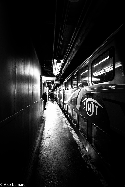 Je trouve que l'atmosphère de cette photo du quai d'embarquement de la gare Centrale de Montréal a quelque chose de caverneux avec le train suintant et l'éclairage unidirectionnel du néon qui semble nous attiré vers l'avant.