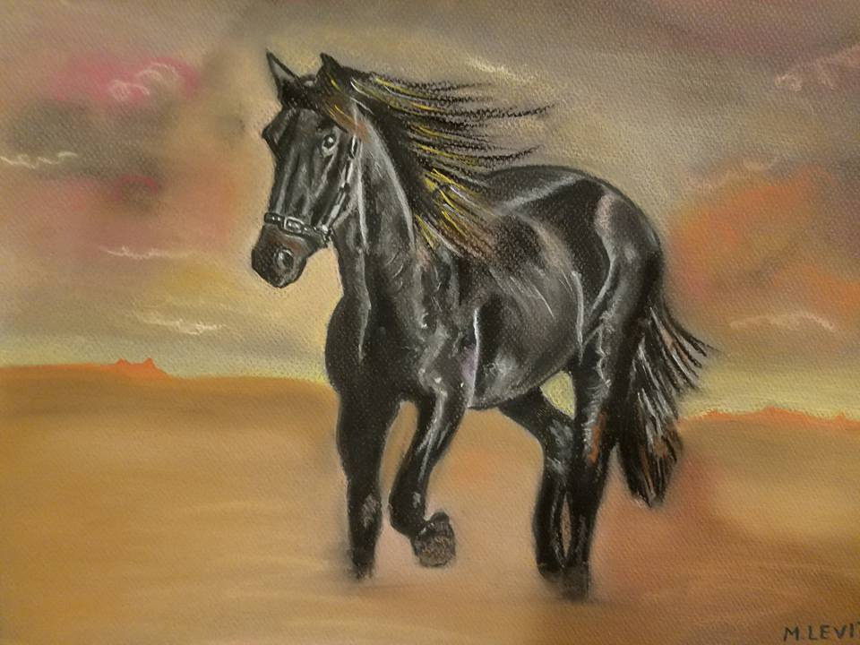joanne tarlin student - horse.jpg