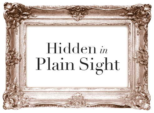 Hidden in Plain Sight graphic.jpeg