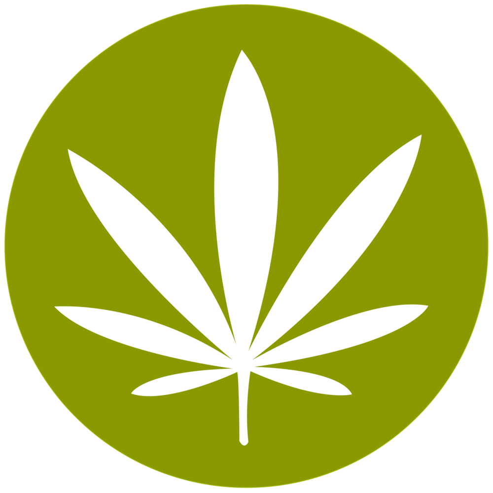 cannabis-marijuana plant.png