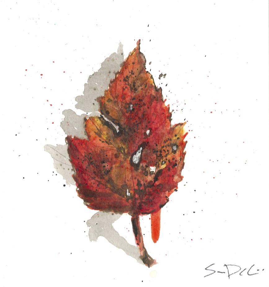 Maple Leaf Portrait 062