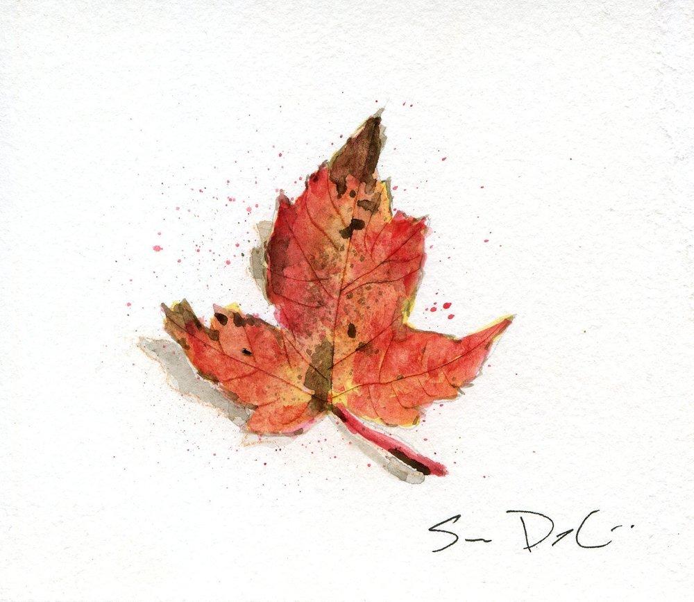 Leaf 016.jpg