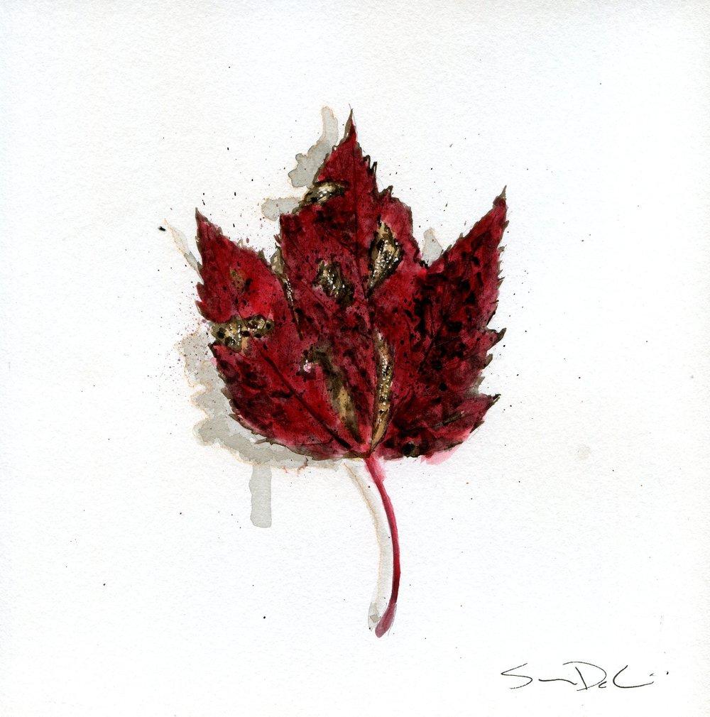Leaf 022.jpg