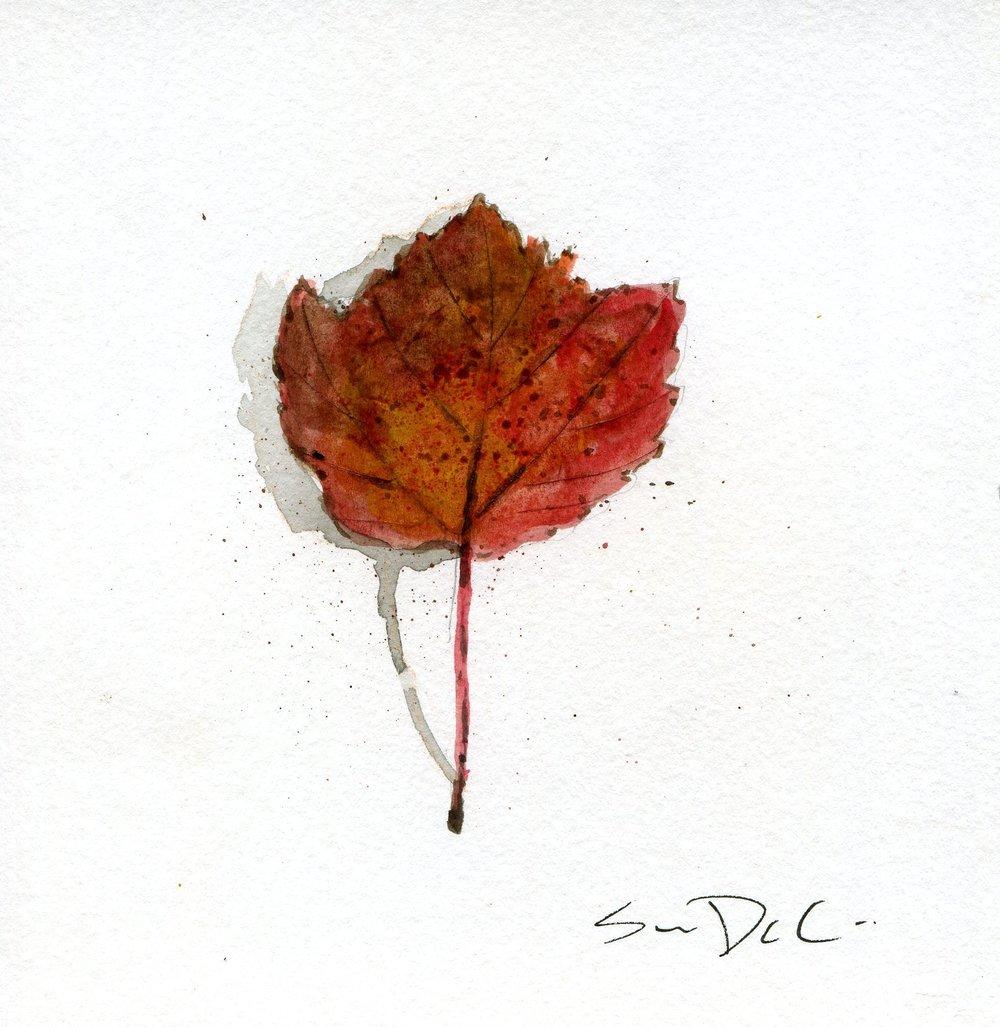 Leaf 026.jpg