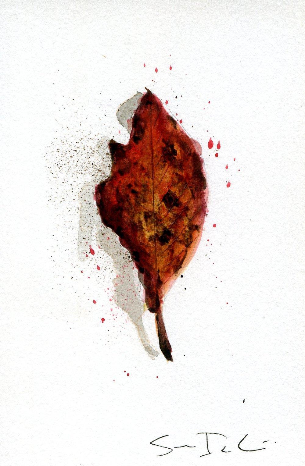 Leaf 028.jpg