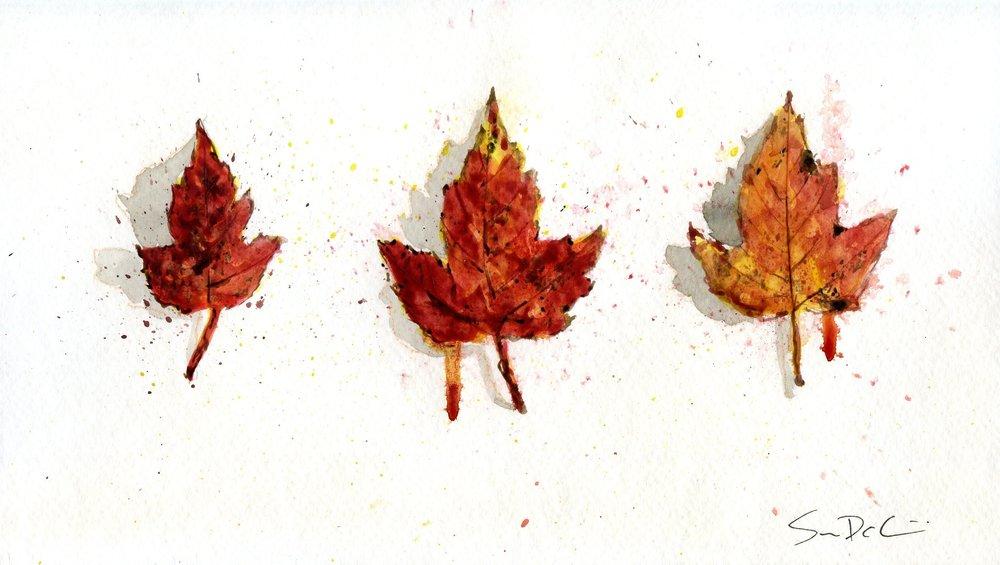 Leaf 036.jpg
