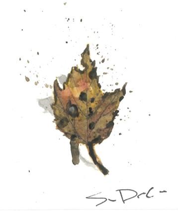 Leaf 039.jpg